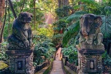 غابة القرود الخائفة -Sacred Monkey Forest